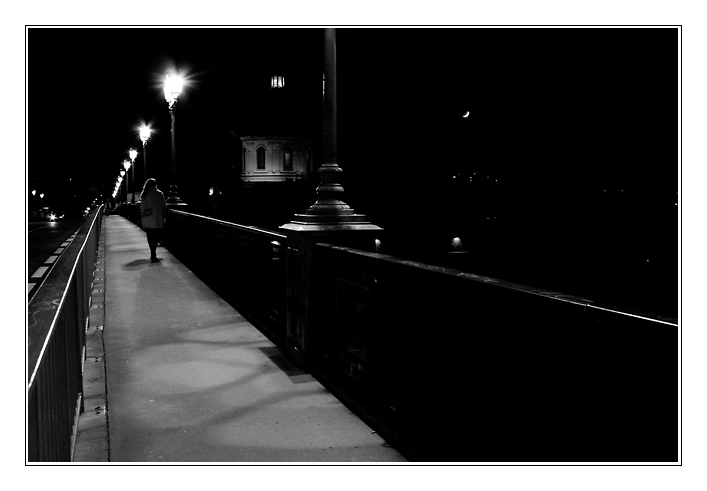 Toulouse by night nbw4