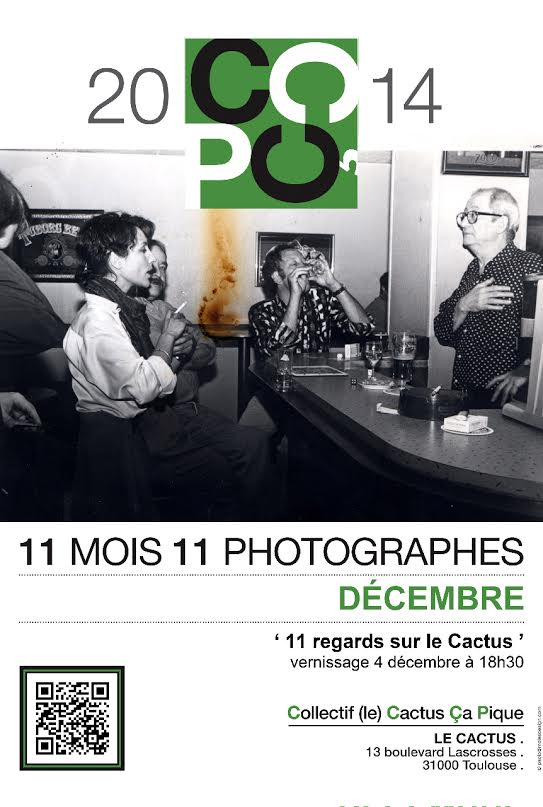 11 regards sur le cactus